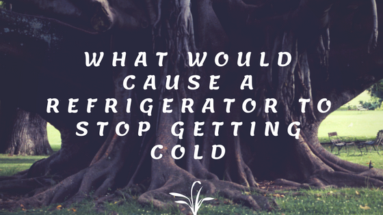 What would cause a refrigerator to stop getting cold