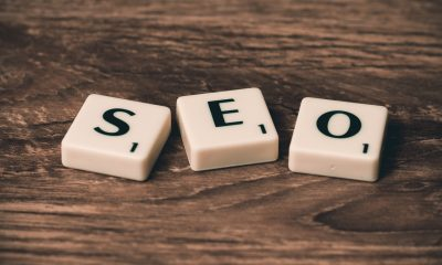 become an SEO specialist after college