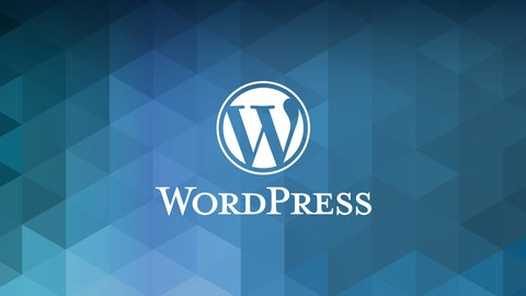 The Difference Between a Professional WordPress Developer and Someone Who Knows WordPress